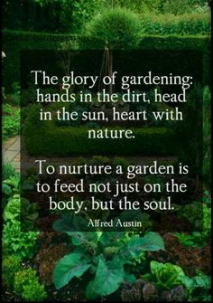 Gardening: hands in dirt, head in the sun, heart with nature. Feeds the body and soul.
