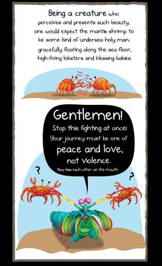 Thermonuclear Bomb of Light and Beauty: the Mantis Shrimp