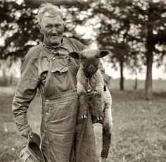 Shorpy Historical Photo Archive :: Embraceable Ewe: 1936