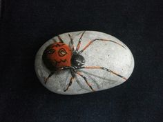 Spider painted on rock.