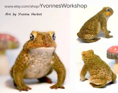 Needle felted toad by Yvonne Herbst of Yvonnes Workshop.