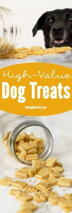 The perfect homemade high-value dog treats for training. Easy, inexpensive, and irresistible to dogs. Your pup will do anything for these things. Also cat friendly--your cat would probably be willing to trip you for one. #pets #healthy