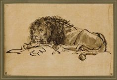 Rembrandt 'Lion Resting' c.1650-52 by Plum leaves (almost done unpacking from our move!), via Flickr