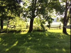 Pastoral bliss on a summer morning - maple trees and split-rail fences Split Rail Fence, Shabby Chic Antiques, Farm Stay, Maple Tree, Horse Farms, Antique Shops, Rustic Chic, Resort Spa, Fences