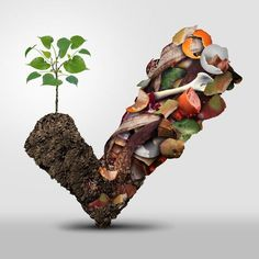 40+ things you can compost Composting is more than just a natural and free fertilizer for your garden. To truly reduce waste, (more than food waste), is  a sust