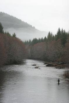 It is solitary, frigid cold, and a successful catch rate that will leave 99% of all fisherman back at home.  That is why I dig winter steelhead fishing!