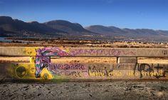 Veronika Paints - Street Art - Google Plus Page