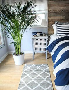 Areca Palm: Remember that empty corner we were talking about? Here's a plant that will make for a pretty li'l vignette as well as take all those bad breathe-ables away.