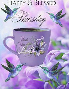 Happy Thursday Morning, Good Thursday, Happy Day, Morning Pictures, Morning Pics, Thursday Greetings, Thursday Images, Morning Blessings, Morning Greeting