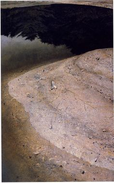 River Cove Andrew Wyeth