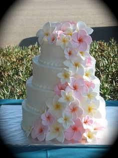 Wedding Cake with Plumeria flowers and   then put real ones on the table around it