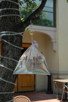 I've researched several sites - and it seems this may actually work - pretty cheap to try it out!  Fly Control Plastic Bags - Natural Organic Home Garden Health Howard Garrett Dirt Doctor