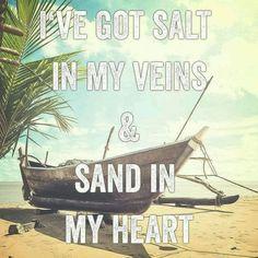 Salt & Sand.