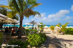 Read about our visit to Blanchard's Beach Shack here: Blanchard's Beach Shack, Anguilla