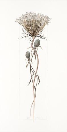 Steve Morris WATERCOLOR. Visit artist's website