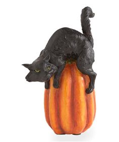 Another great find on #zulily! 9'' Cat & Pumpkin Figurine #zulilyfinds