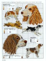 Gallery.ru / Фото #14 - Picture Your Pet in Cross Stitch - patrizia61