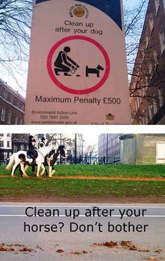 I have just noticed that dog owners in Westminster's Hyde Park have to pick up dog droppings but horse owners don't have to pick up after horses.