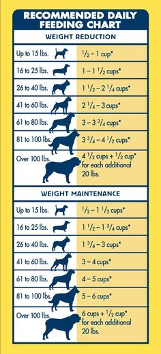 BLUE Life Protection Formula® Healthy Weight is made to help your dog lose weight while still getting a healthy, satisfying meal. Made with real chicken and free from corn, wheat or soy, the ingredients in BLUE make this the choice for pet parents seeking
