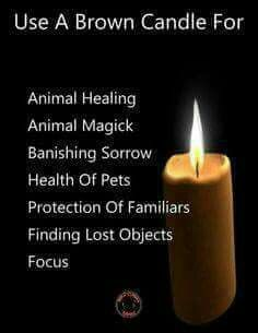 When I saw this I suddenly got a strong scent of brown sugar Wiccan Witch, Magick Spells, Candle Spells, Brown Candles, Animal Reiki, Witchcraft For Beginners, Eclectic Witch, Witch Spell, Color Magic