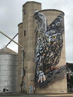 Grafitti Street, Murals Street Art, 3d Street Art, Street Artists, Local Museums, Unusual Buildings, Australian Artists, Australian Cars, Amazing Street Art
