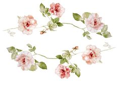 Find vintage flower illustration stock images in HD and millions of other royalty-free stock photos, illustrations and vectors in the Shutterstock collection. Blossom Tattoo, Flower Pictures, Flowers Pics, En Stock, Botanical Illustration, Vintage Flowers, Flower Prints, Printable Art, Watercolor Art