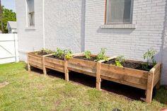 Pallette raised garden beds
