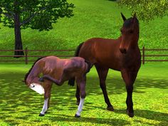 adoreible sims 3 horses | Sims 3 Mare and Foal by Larafan2