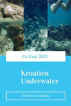 Schnorcheln in Dalmatien und warum mir die Unterwasserwelt die Notwendigkeit von bewusstem Umgang mit der Umwelt wieder ganz groß vor Augen geführt hat. Travel Tips, Snorkeling, Croatia, Sustainability, Eyes, Plants