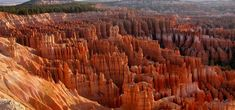 """There is no place quite like Bryce Canyon. Hoodoos (odd-shaped pillars of rock left standing from the forces of erosion) can be found on every continent, but here is the archetypal """"hoodoo-iferous"""" terrain. Descriptions fail. Cave without a roof? Forest of stone? Even photographs strain credulity. When you visit maybe you'll come up with a better name. In the meantime """"Bryce"""" will have to suffice. At Bryce Canyon, hoodoos range in size from that of an average human to..."""