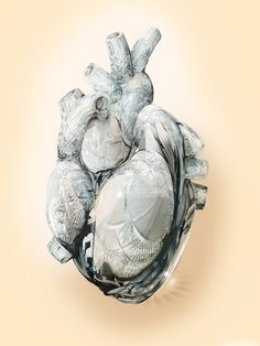 "the heart - ""Flora - Fragile Hearts"" by Caroline Vos"