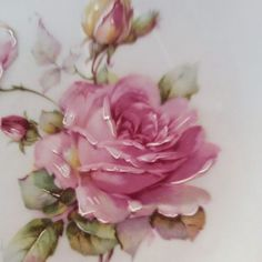 Hand painted rose on porcelain China Painting, Tole Painting, Ceramic Painting, Art Vintage, Vintage Flowers, Art Floral, Decoupage, Rose Art, Pictures To Paint