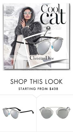 """""""#WinterSunnies: Christion Dior"""" by theseapearl ❤ liked on Polyvore featuring Christian Dior, hoodie, fashionset, winterstyle and wintersunnies"""