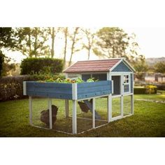You'll love the Pointe Elizabeth Rooftop Garden Chicken Coop at Wayfair - Great Deals on all Furniture products with Free Shipping on most stuff, even the big stuff.