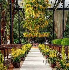 Decoração de cerimônia no jardim - em amarelo e verde - flores suspensas - arranjos aéreos - orquídeas ( Decoração: Luis Fronterotta | Foto: Rafael Cruz )