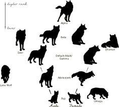 Wolf Ranks