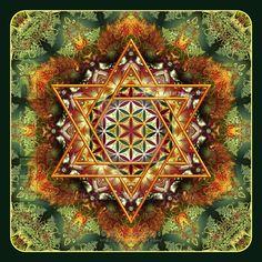 Flower of Life Fractal Mandala Green by Lilyas.deviantart.com on @DeviantArt