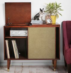 This is a great storage console, especially for my turntable and shelf system. I usually wouldn't think to find good pieces at Urban Outfitters, but I love the look and the price is right. $200