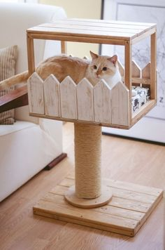 Complete park for cats, with scraper and bed, made with .- Parque completo para gatos, con rascador y camita, hecho con madera de pino reci… Comp. Diy Pour Chien, Cat Climbing Tree, Cat House Diy, House For Cats, Outside Cat House, Diy Cat Tree, Wood Cat, Cat Scratching Post, Cat Room