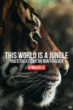 This world is a jungle, you either fight or run forever ! Are you a fighter or a runner ? http://www.gymaholic.co