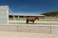 Gallery of Equestrian Buildings / Seth Stein Architects + Watson Architecture+Design - 2