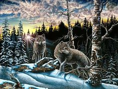 Hidden 12 wolves images by Stephen Michael Gardner will expand your mind and balance your brain hemispheres.