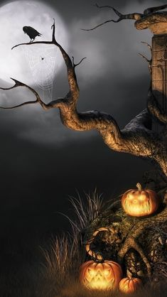 A neat Spooky Halloween Scenery .
