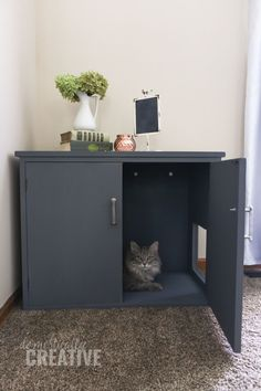 You can make your own litter box furniture without spending a fortune! Turn a thrift store find into a litter box cabinet and hide that unsightly cat box! Cat Litter Cabinet, Hiding Cat Litter Box, Diy Litter Box, Hidden Litter Boxes, Litter Box Enclosure, Thrift Store Furniture, Cat Furniture, Diy Cat Tree, Cat Toilet