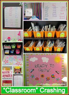 """Classroom"" Organization on a Color Scheme"