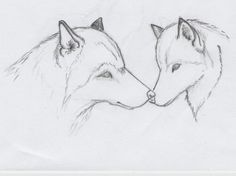 simple drawing of animals wolf sketch by greywolves-redroses - Emma Fisher to draw drawings # simple . Drawings of Animals Easy Animal Drawings, Pencil Drawings Of Animals, Animal Sketches, Cute Drawings, Wolf Drawings, Drawing Animals, Wolf Sketch Easy, Wolf Drawing Easy, Drawing Step