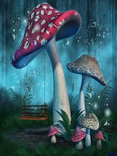 Fantasy Mushrooms With Fairy Swing In Forest Photography Backdrop Fantasy Art Landscapes, Fantasy Paintings, Cross Paintings, Fantasy Landscape, Fairy Paintings, Forest Drawing, Forest Painting, Mushroom Drawing, Mushroom Art
