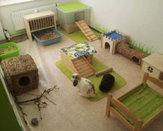 boredom busters, rabbit toy, rabbit hut, rabbit tent
