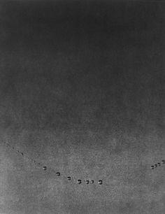 Edward Dimsdale, ''Dew drops''