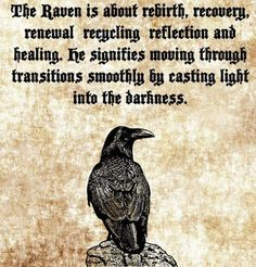 The Characteristics of the Raven as a Spirit Animal – Witches Of The Craft® – Norse Mythology-Vikings-Tattoo Rabe Tattoo, Raven Bird, The Raven, Viking Quotes, Viking Sayings, Animal Spirit Guides, Raven Spirit Animal, Norse Pagan, Spirit Quotes